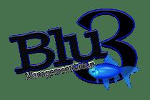 Blu3 logo copy